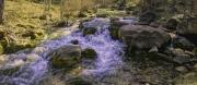1_Little-Elk-Creek