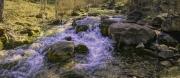 Little-Elk-Creek