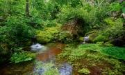 Botany-Canyon-3-