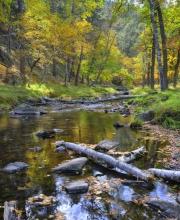Custer-Creek