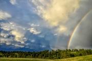 Custer-Rainbow