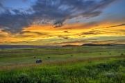 Erickson-Ranch-Road-Sunset