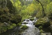 Iron-Creek-5
