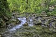 Iron-Creek-Spring-1