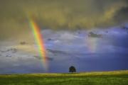Rainbow-Sunset