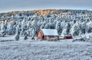 Winter-Barn-in-Piedmont